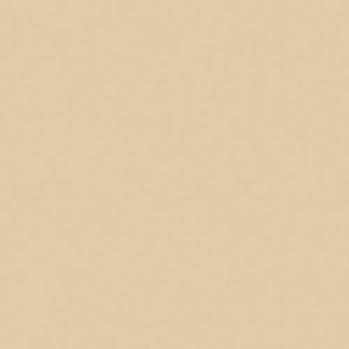 Formica High Pressure Laminate Desert Beige 899 Postforming Matte Laminate 4' x 8'