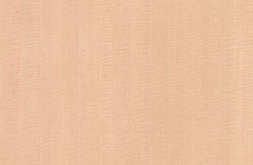 Nevamar High Pressure Laminate Champagne Sagawood WM8349 Vertical Textured HPL 4' x 8'
