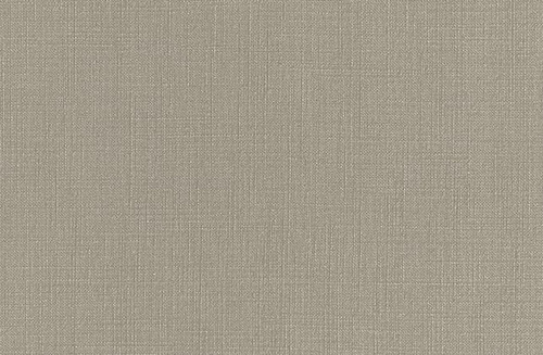 Pionite High Pressure Laminate Beachcomber AT988 Postforming Suede HPL 4' x 8'