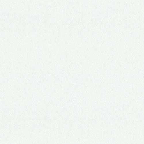 "Arauco Prism White TFL G2S Custom PB 3/4"" x 61"" x 109"""
