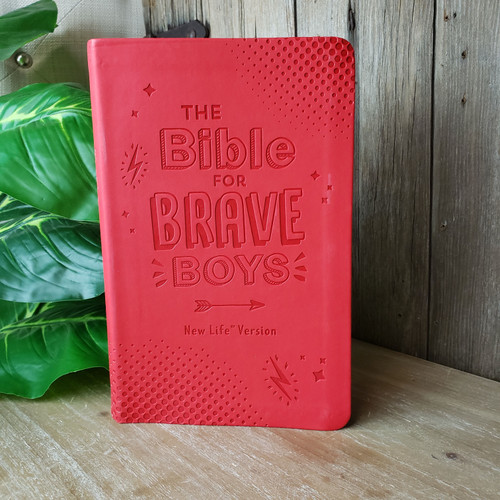 The Bible for Brave Boys