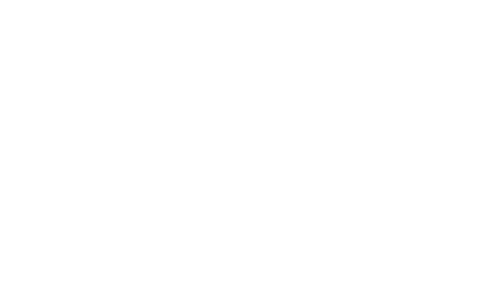 PAMAX TACTICAL