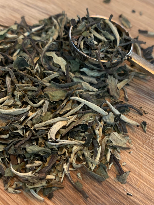 Sisters Tea Company Oasis Mango Pai Mu Tan White Tea