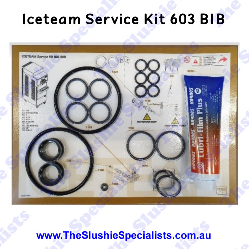Iceteam / Carpigiani 603 BIB - Service Kit IC193-013441