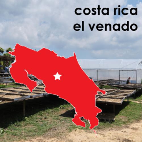 Costa Rica el Venado