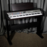 Lowrey EZ1 Virtual Orchestra and Organ - New In Box - Free Delivery in the Continental US!