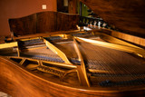Vintage 1930's Büthner Baby Grand Piano with Bench
