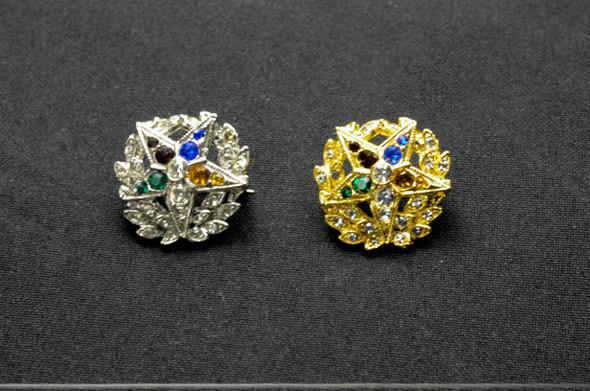 Jeweled Member Pin ..
