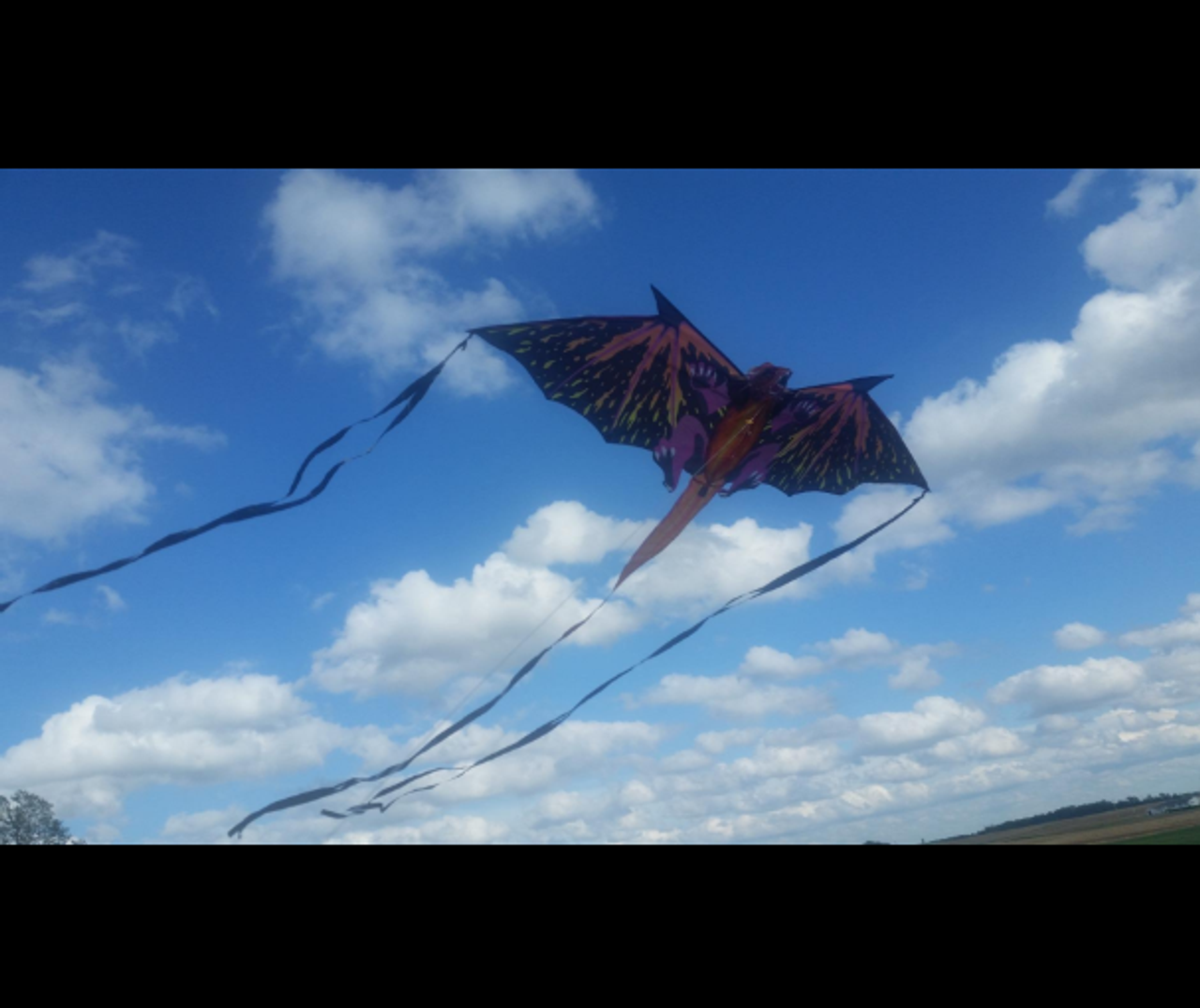 "64"" Dragon Fantasy Flier Kite"