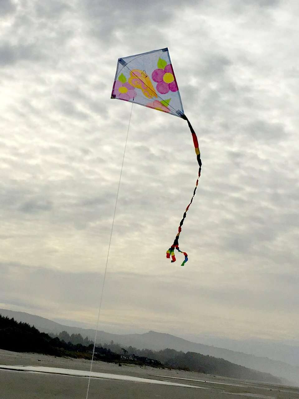 "20"" Diamond Coloring Kite W/ Crayons"