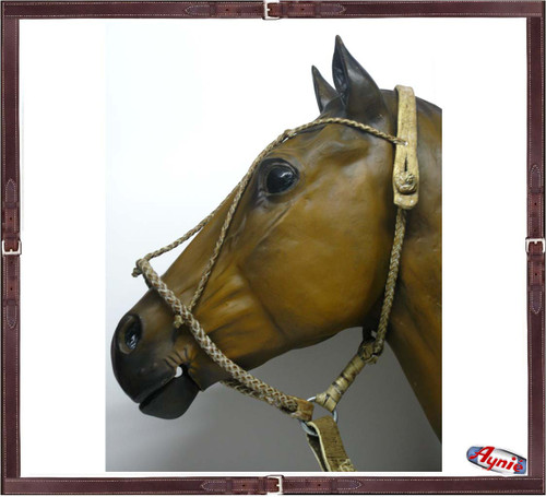 4 Braided Rawhide Halter with Lead.