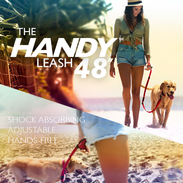 Handy Leash