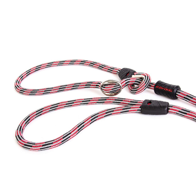 EzyDog Leash and Collar