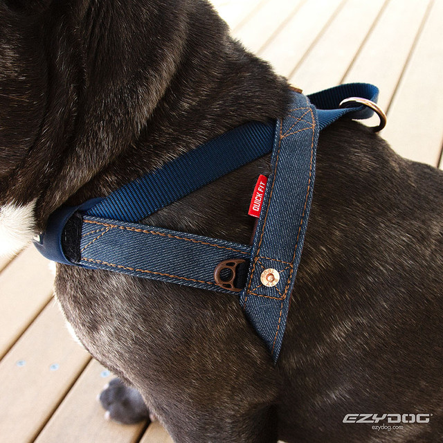 Denim Quick Fit Harness by EzyDog