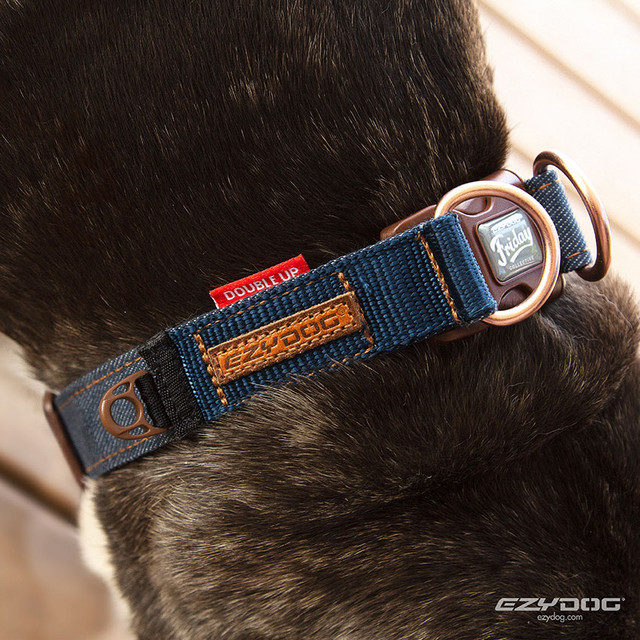 EzyDg Denim Collars