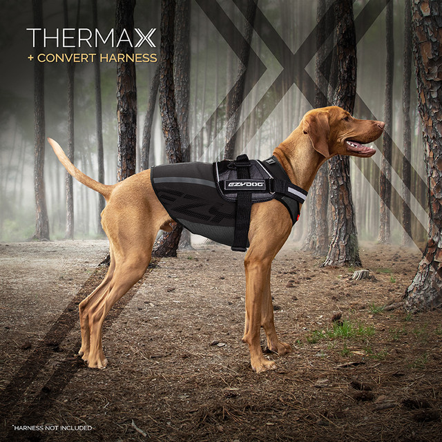 Vest is worn under the dog harness