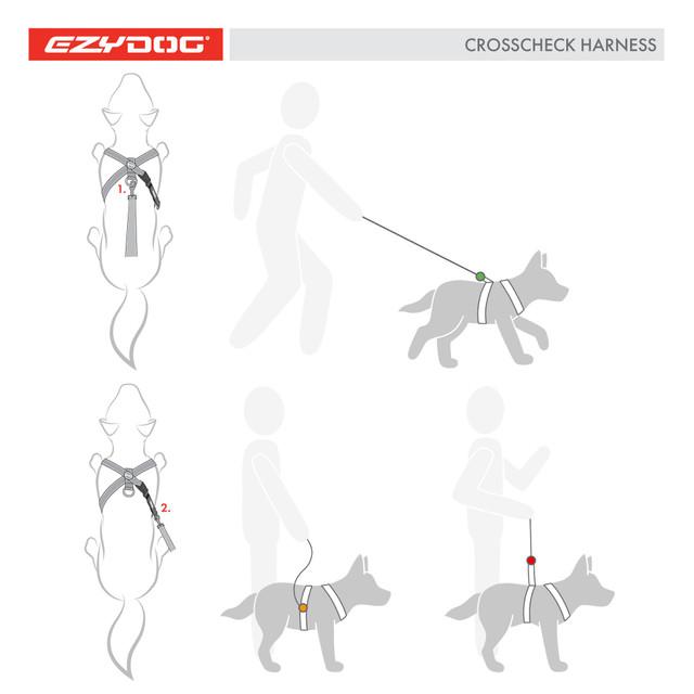 Crosscheck Harness