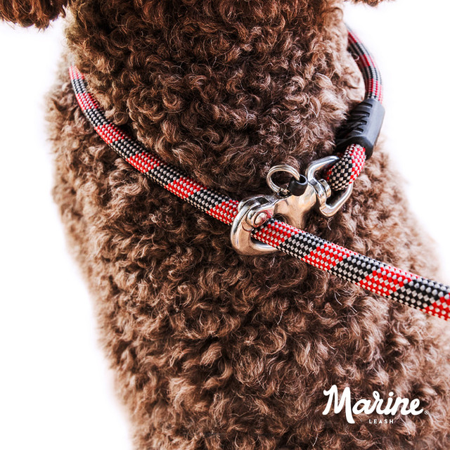 Rope Dog Collar and Leash