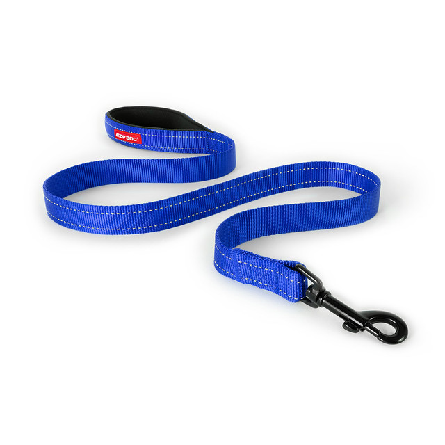 Essential Leash - Blue