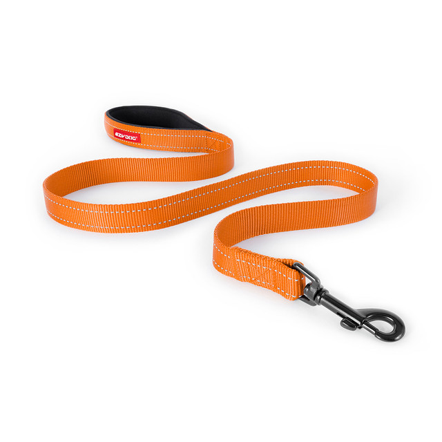 Essential Leash - Orange