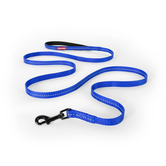 Essential LITE Leash - Blue