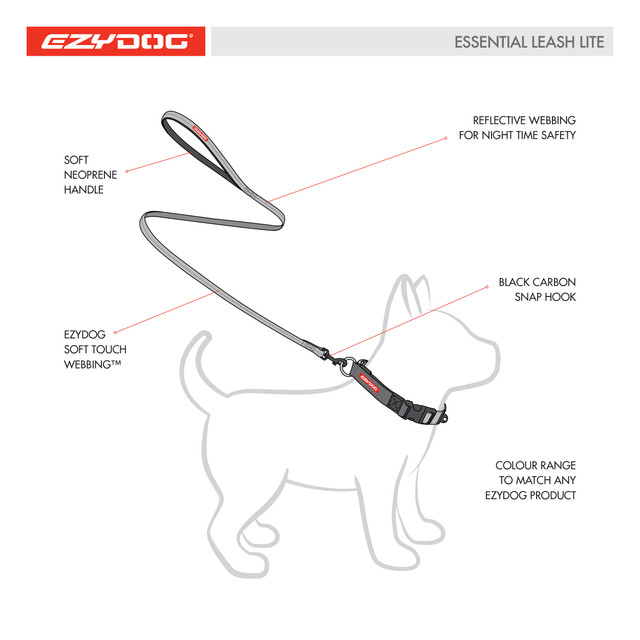 Leash for small dogs