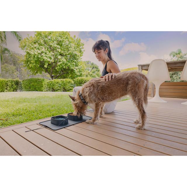 Dog Travel Bowl Australia