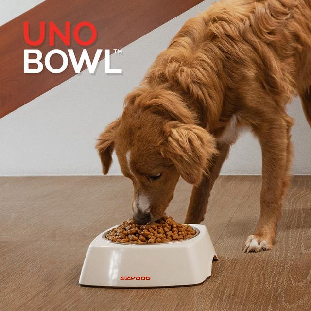 Uno Dog Bowls
