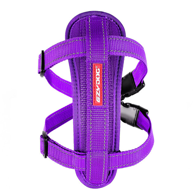 Chest Plate Harness - Purple