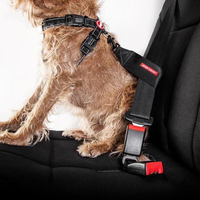 EzyDog Seat Belt