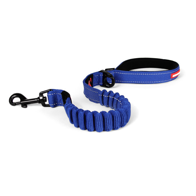 Zero Shock Leash 25 - Blue