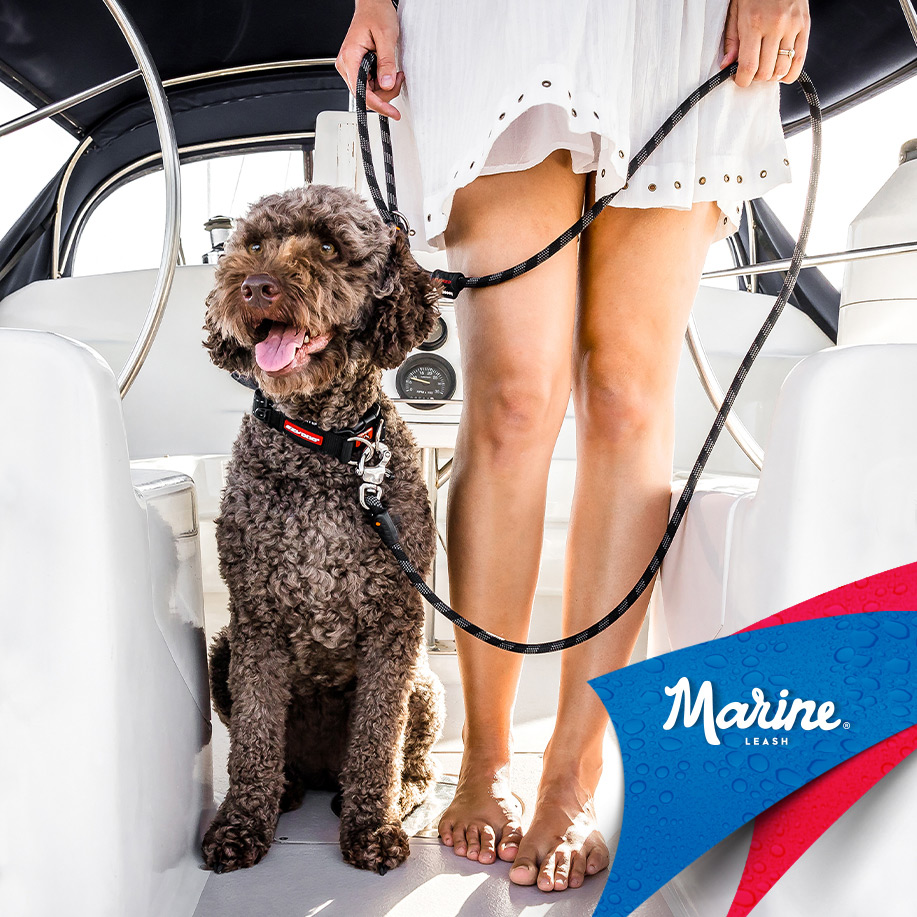 marineleash-launch-bc-cp-tile.jpg