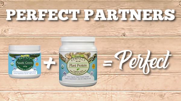 a perfect partner