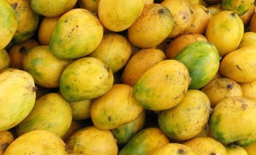 African Mango Overview
