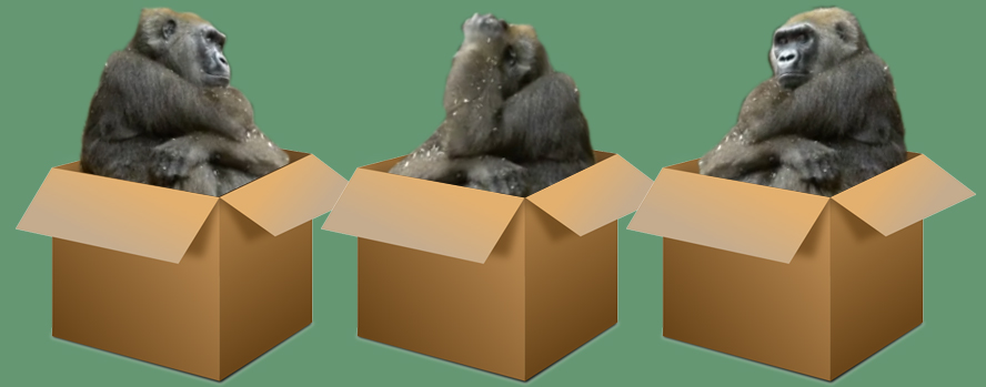 Why We Don't Ship Gorillas.  A Perfect Customer Care Story