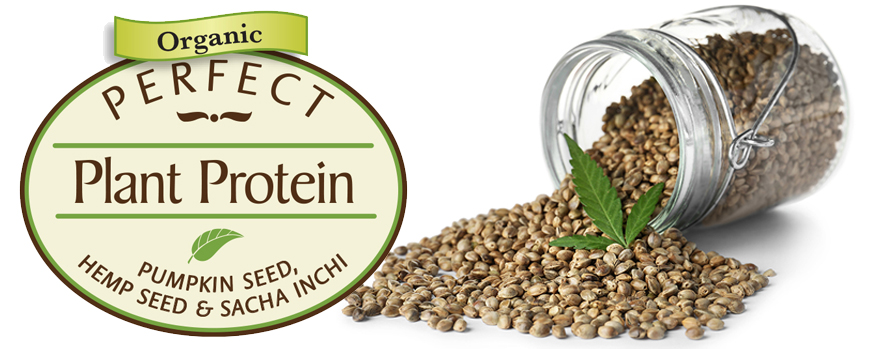 Spotlight on Hemp Seed: A Complete Protein