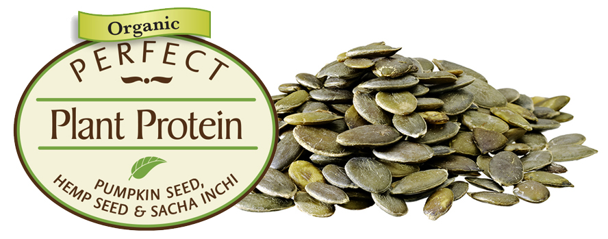 Spotlight on Pumpkin Seed: Nutrient Dense Protein