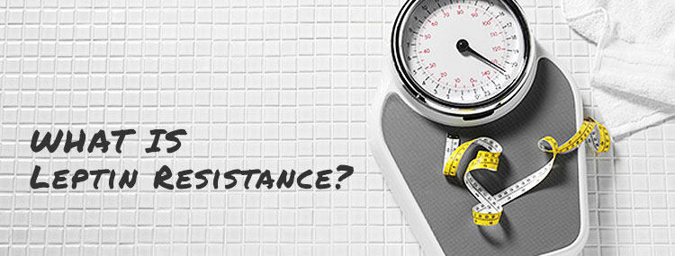 Leptin Resistance and Weight Loss