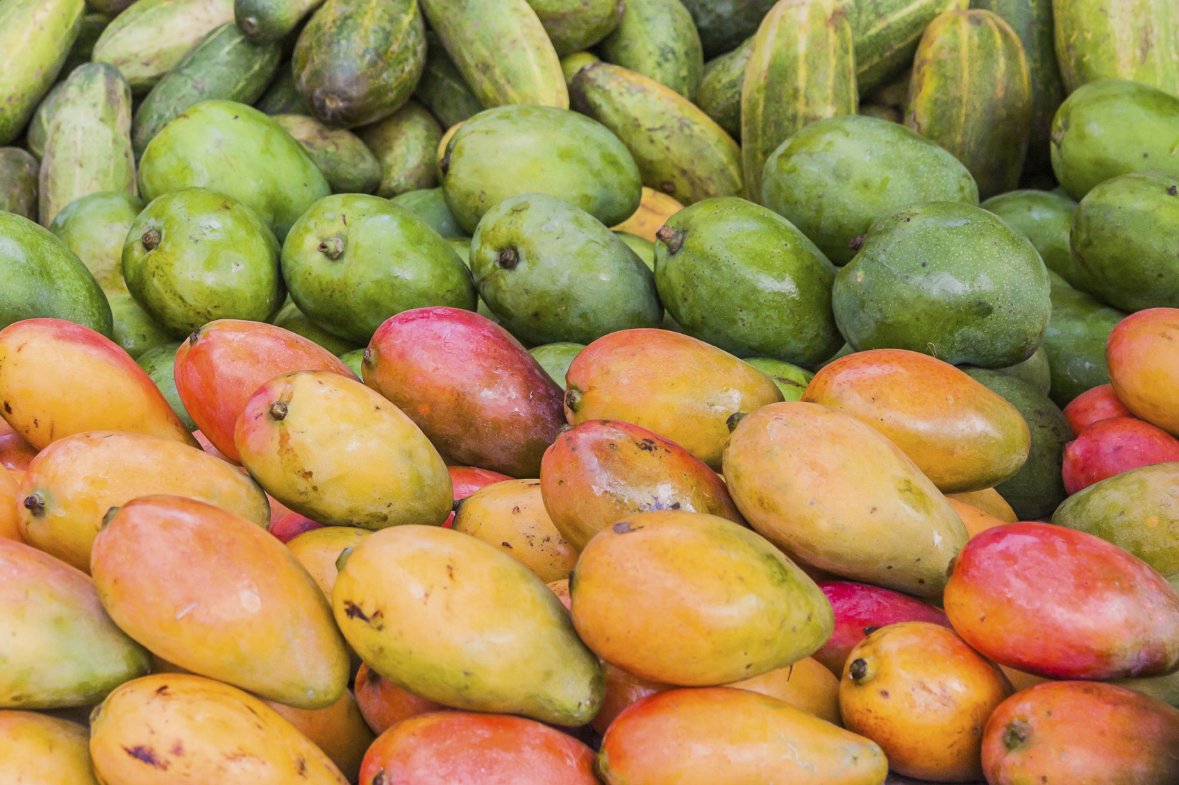 African Mango For Weight Loss And More!