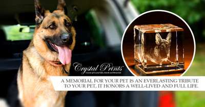 ​Preserve Happiness with Pet Memorials