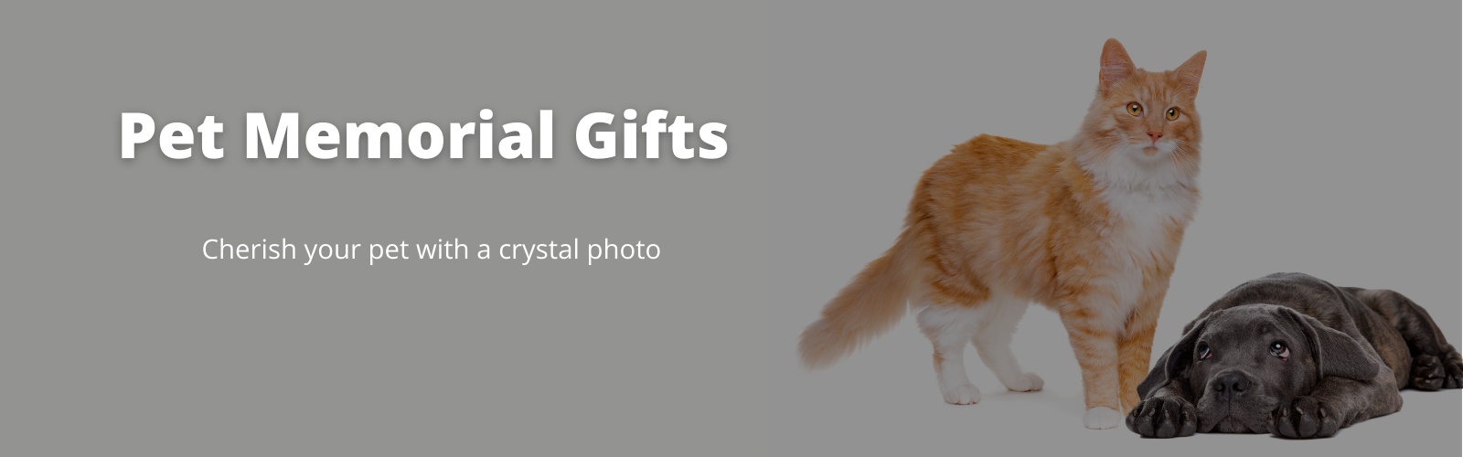Shop Pet Memorial Gifts From Crystal Prints