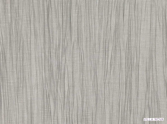 Villa Nova - Pelli Pigeon  | Curtain Fabric - Washable, Grey, Stripe, Wide-Width, Dry Clean, Trevira CS, Decorative, Plisse, Fibre Blend