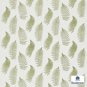 Sanderson Fern Embroidery 235608  | Curtain Fabric - Fibre Blends, Floral, Garden, Midcentury, Transitional, Domestic Use, Embroidery, Standard Width