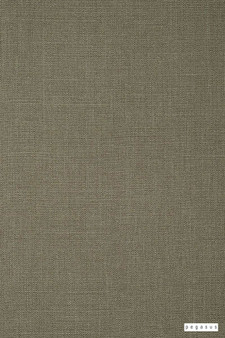 Pegasus - Stallion 2 Uc - Fossil - 30298-112  | Curtain Fabric - Fire Retardant, Brown, Plain, Fibre Blend, Standard Width