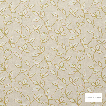 Clarke & Clarke - Chartwell Acacia  | Curtain Fabric - Gold, Yellow, Floral, Garden, Botantical, Embroidery, Scroll, Fibre Blend