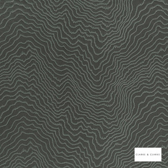 Clarke & Clarke - Fiji Charcoal    Curtain & Upholstery fabric - Black, Charcoal, Abstract, Vermicular, Fibre Blend