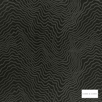 Clarke & Clarke - Fiji Ebony  | Curtain & Upholstery fabric - Black, Charcoal, Abstract, Vermicular, Fibre Blend