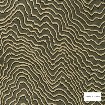 Clarke & Clarke - Fiji Espresso Wp  | Wallpaper, Wallcovering - Green, Abstract, Vermicular, Print