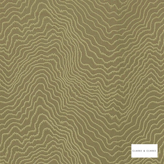 Clarke & Clarke - Fiji Moss  | Curtain & Upholstery fabric - Green, Abstract, Vermicular, Fibre Blend