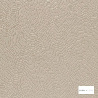 Clarke & Clarke - Fiji Taupe  | Curtain & Upholstery fabric - Beige, Abstract, Vermicular, Organic, Fibre Blend